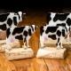 Gedenkbeelden koeien - een persoonlijke asbestemming van glas