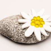 Gepersonaliseerde mini-urn met Edelweiss van glas