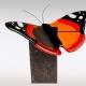 Natuurstenen urn met glazen vlinder