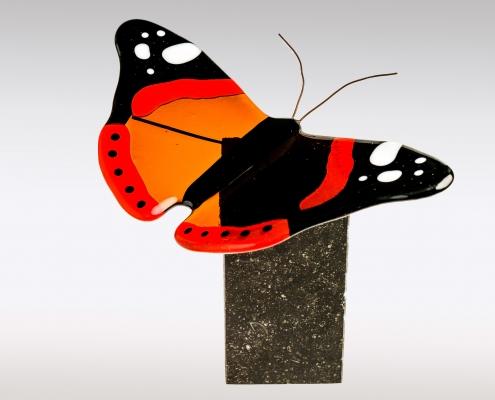 Vlinder urn Atalanta