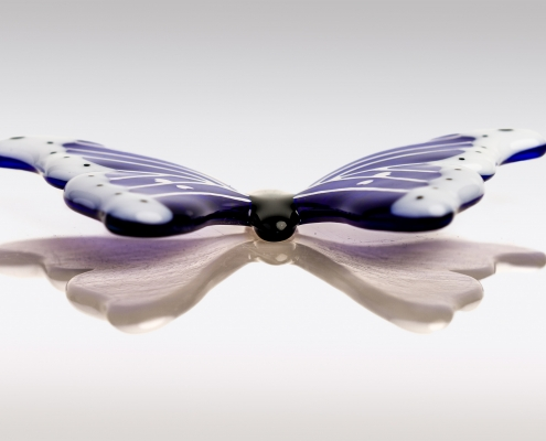 Sierlijke glazen vlinder blauw