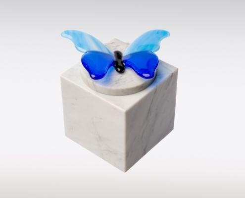 Witte Cubos urn vlinder blauw