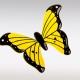 Gele glazen vlinder