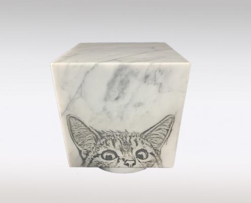 Cubos dierenurn portret kat