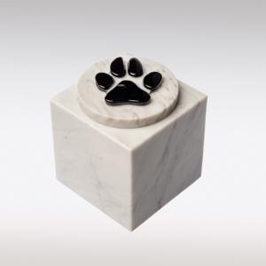 Witte Cubos urn met hondenpootje van glas