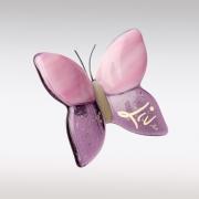 Paars-roze glazen vlindertje met as